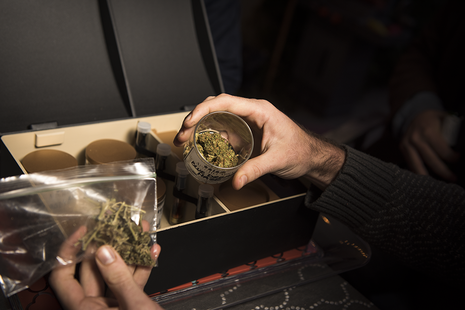 Ganja Game Changer for 2016: The Apothecarry Case