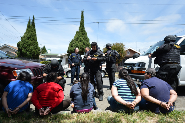 Mexican Cartel Linked to 10 Bay Area Grow Operations