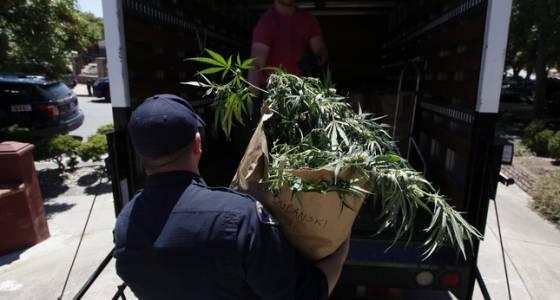 San Jose Police Seize Over $4 Million in Pot Raid