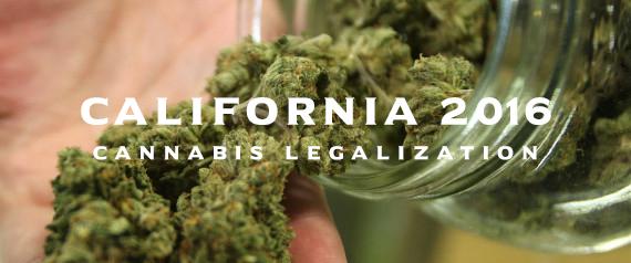 california-cannabis-legalization-20161