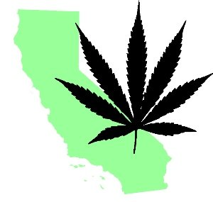 Marijuana Monster Money: California Makes More from Cannabis Than the Next 5 Largest Crops Combined