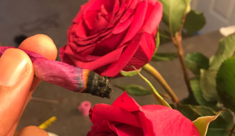 Why You Should Know How to Roll a Rose Petal Blunt