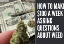 How to Make $100 a Week Asking Questions About Weed