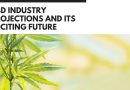 CBD Industry Projections and Its Exciting Future (Infographic)