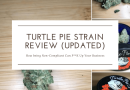 Turtle Pie Strain Review From Turtle Pie Co. (Updated)