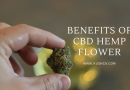 Benefits of CBD Hemp Flower