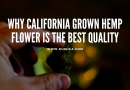 Why California Grown Hemp Flower is the Best Quality