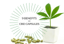 9 Benefits of CBD Capsules