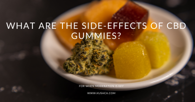 What are the Side-Effects of CBD Gummies?